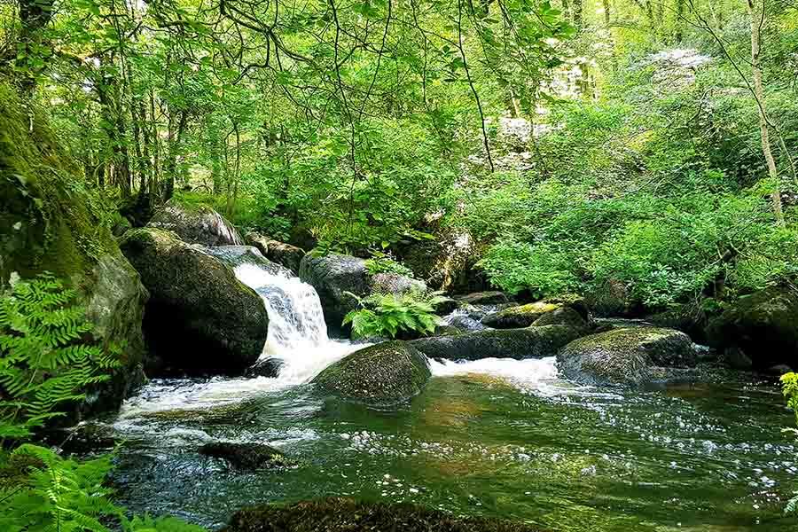 balade le long des cascade dans le Parc Naturel Du Stérou dans le Morbihan
