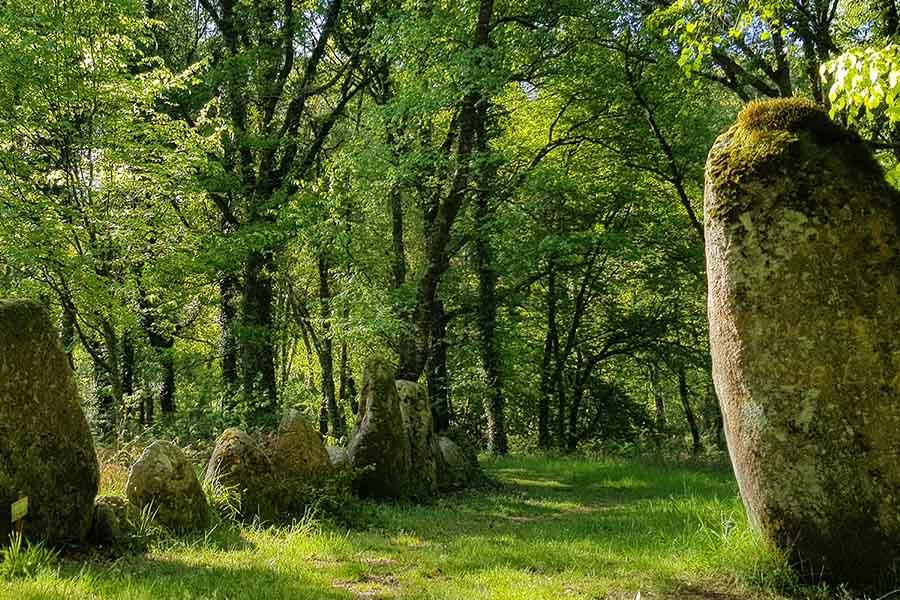 Balade au clos dans le parc naturel du Stérou à Priziac dans le Morbihan.